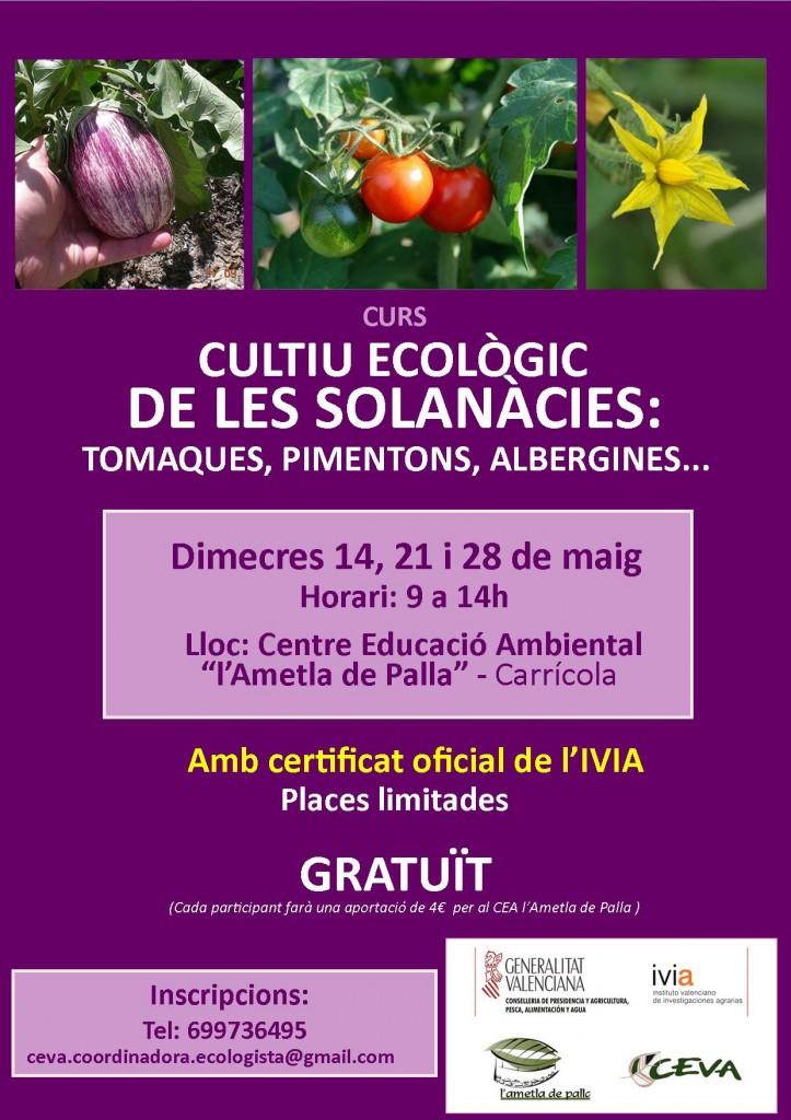 Curs gratuït cultiu eco solanàcies